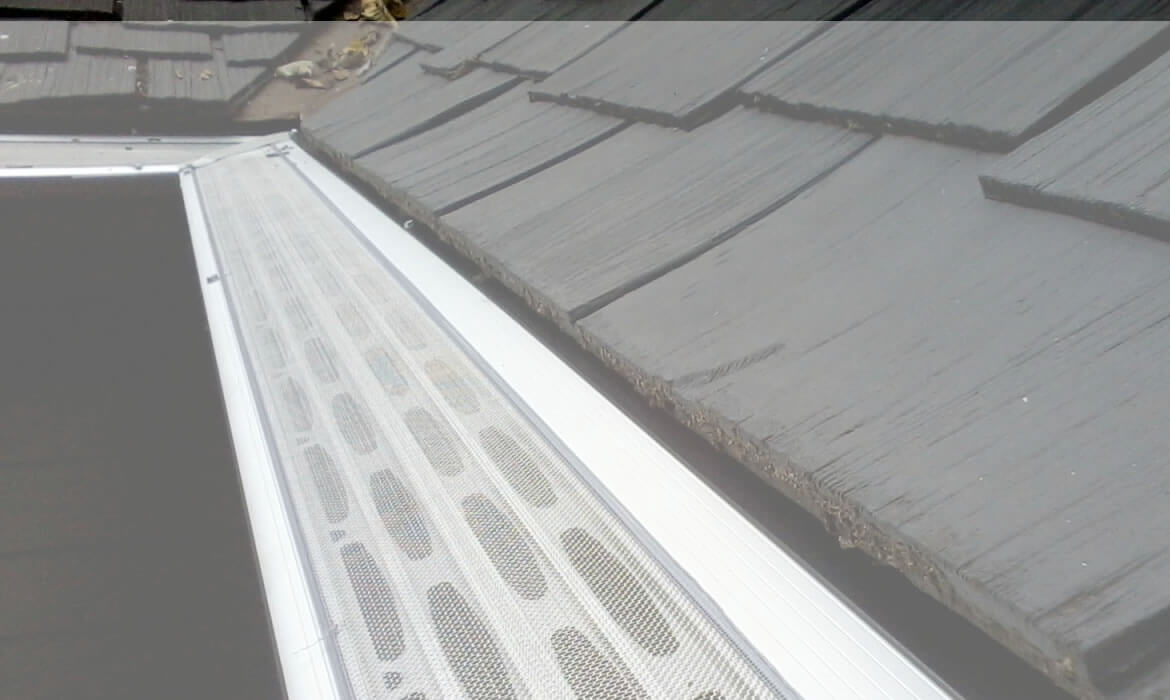 Gutter dome Gutter Guard